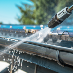 Why Should You Clean Your Gutters?